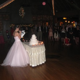 Long Island Sweet 16 DJ Photo 1